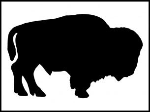 Adult Bison And Buffalo Stencils