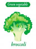 Green vegetable - broccoli