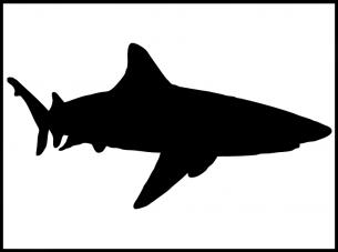 Printable Stencils Shark