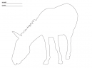 Activity Templates Horse