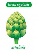 Green vegetable - artichoke