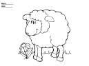 Activity Templates Sheep