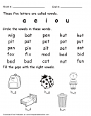 Learn the Vowels Worksheet