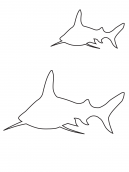 Shark Activities Template