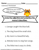 Noun and Adjective  Worksheet