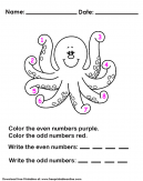 Odd Even Worksheet