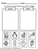 Animals or Plants Worksheets