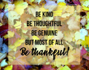 Life Quotes on Thanksgiving Day - Be kind, be thoughtful, be genuine but most of all be thankful!