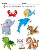 Circle the animals that live under the sea. Is it a Crab, fish, elephant, dolfin, leopard, turtle, cat or a monkey?