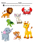 Circle the animals that live in the savanna. Could be? Lion, Crab, Cat, Turtle, Giraffe, Elephant, Dog? You Choose