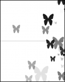 White Butterfly Design Cards